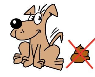 Loslopende honden en dode kalveren